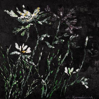 Lucie Hamalainen - Nuit fleurie